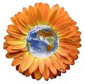 flowerearth